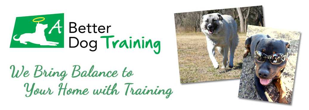 A Better Dog Training logo